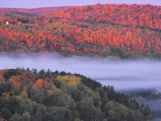 Fall over Bancroft by Tracey Faught