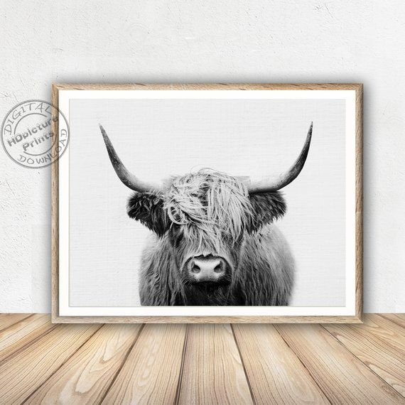 Buffalo Print Digital Download Cattle Picture Cattle Print Forest Animal Cattle Wall Art Farm Animal Rint Wall Cow Wall Art Highland Cow Print Buffalo Painting
