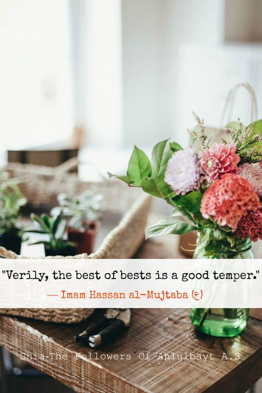 """""""Verily, the best of bests is a good temper."""" — Imam Hassan al-Mujtaba (ع) Al-Khisal , p. 29"""