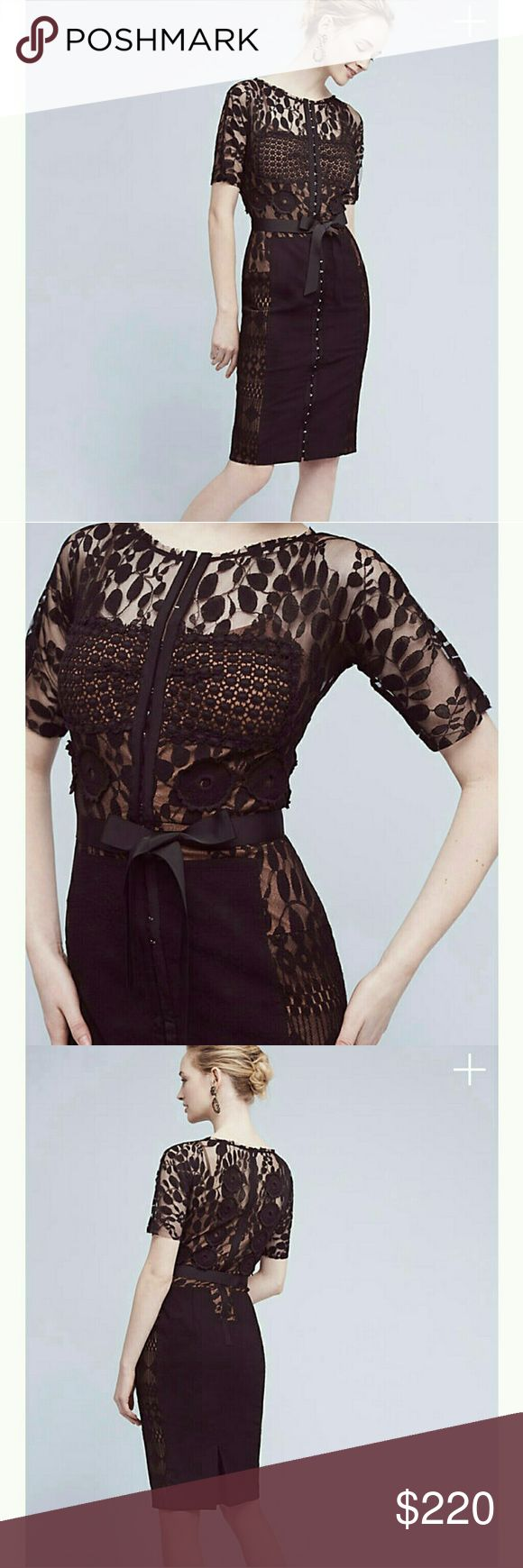 Anthropologie  Byron  Lars Carrisina Sheath A San Francisco native who earned insta-praise and was lauded as Women's Wear Daily's Rookie of the Year for his first collection, Byron Lars specializes in expertly structured, sensuously cut silhouettes. We're so smitten with this pencil dress from his Anthropologie-exclusive Beguile line; the lace and appliqued flowers make it a perfect piece for every occasion. Add strappy, sparkly sandals for an event-ready look. NWT, still regular price…