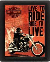 Harley Davidson (Live to Ride)