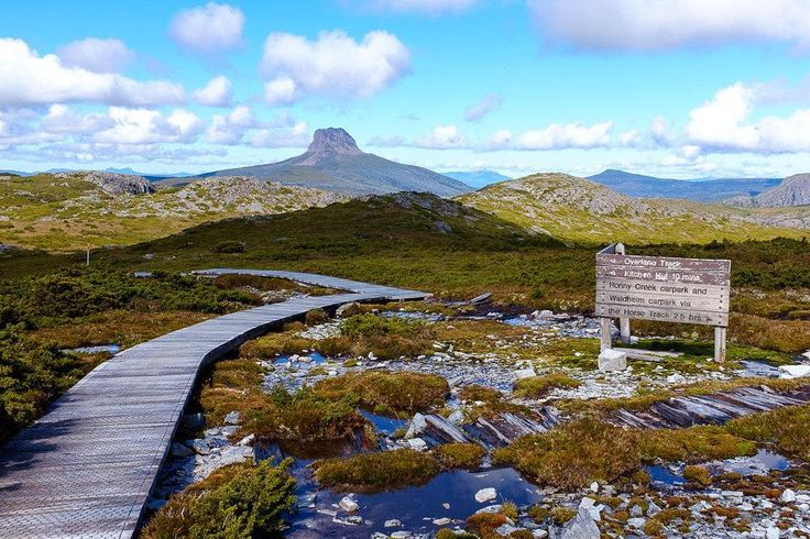On the way to Cradle Mountain Summit