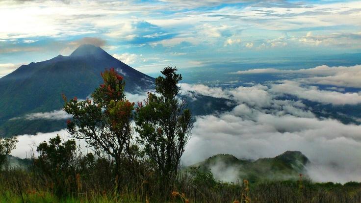 Merapi, dari pos sabana 1, Gunung Merbabu.