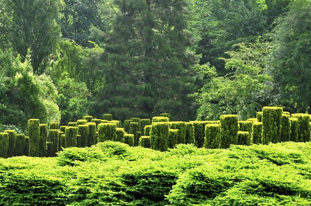 Les Jardins de Sericourt  Yves and Guillaume Gosse deo Gorre