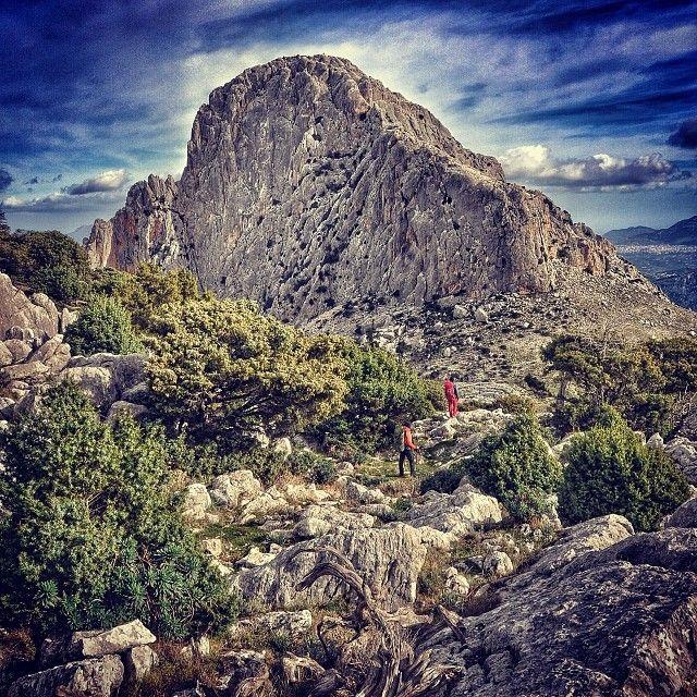Ancora suoni, odori e colori del #Supramonte. Siamo nella #Sardegna centrorientale dove i paesaggi sono di una bellezza selvaggia. Scenari incredibilmente suggestivi caratterizzati da profonde gole e canyon che arrivano fino al mare.  Immaginate di fare un #trekking da queste parti. Lasciatevi inebriare dai profumi della macchia mediterranea.  #sardinia #italy #italia