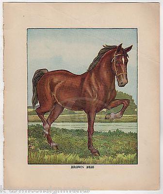 BROWN BESS FARM HORSE ANTIQUE CHIDREN'S NURSERY COLOR ILLUSTRATION PRINT