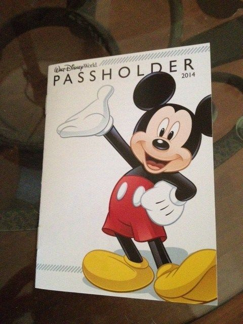 TMSM Adventures in Florida Living ~ Getting a WDW Annual Pass!