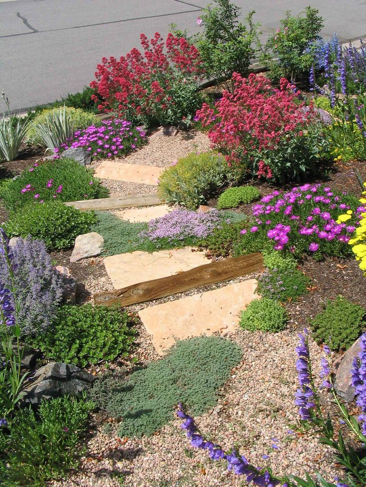 Natural flagstone staircase wanders through a xeric garden on a steep slope.