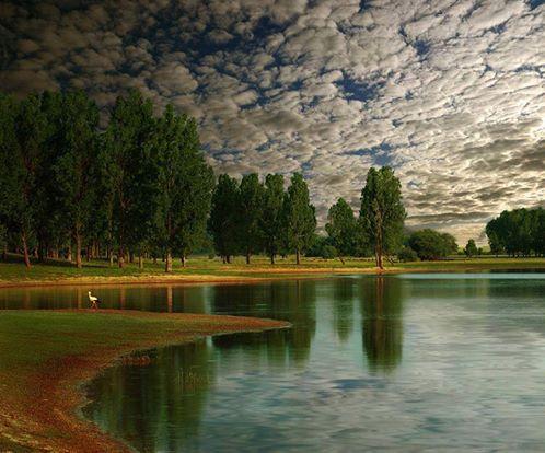 A imagem pode conter: nuvem, céu, árvore, atividades ao ar livre, natureza e água