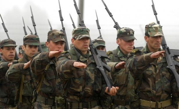 MPP promovió transformar las Fuerzas Armadas con recorte de oficiales