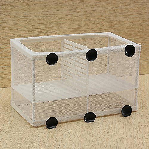 14 best just keep swimming images on pinterest fish aquariums dual net breeder aquarium fish tank breeding hatchery kit la cra del tanque fandeluxe Choice Image
