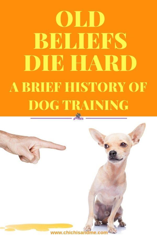 Title A Brief History Of Dog Training Dog Training Cute