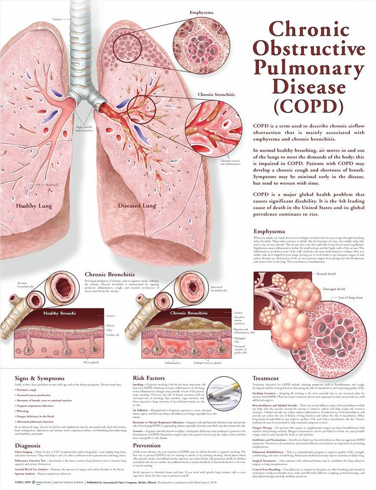 1 chronic obstructive pulmonary disease and Start studying chronic obstructive pulmonary disease (copd) learn vocabulary, terms, and more with flashcards, games, and other study tools.