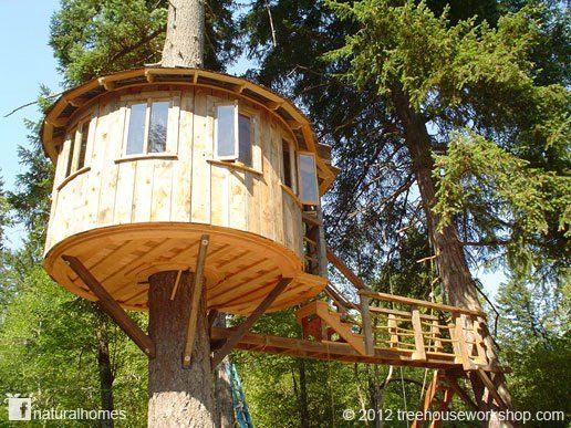 54 Best Tree Houses Images On Pinterest Treehouses Amazing Tree
