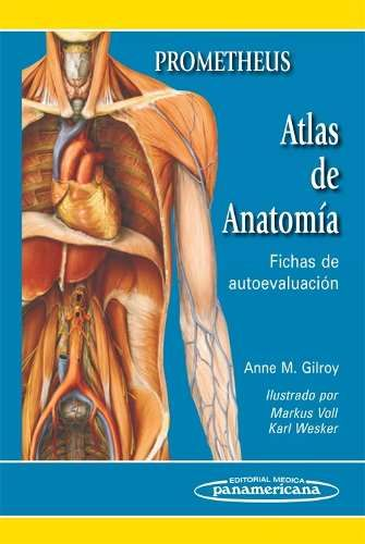 39 best Libros Anatomia images on Pinterest | Medicina, Anatomía ...
