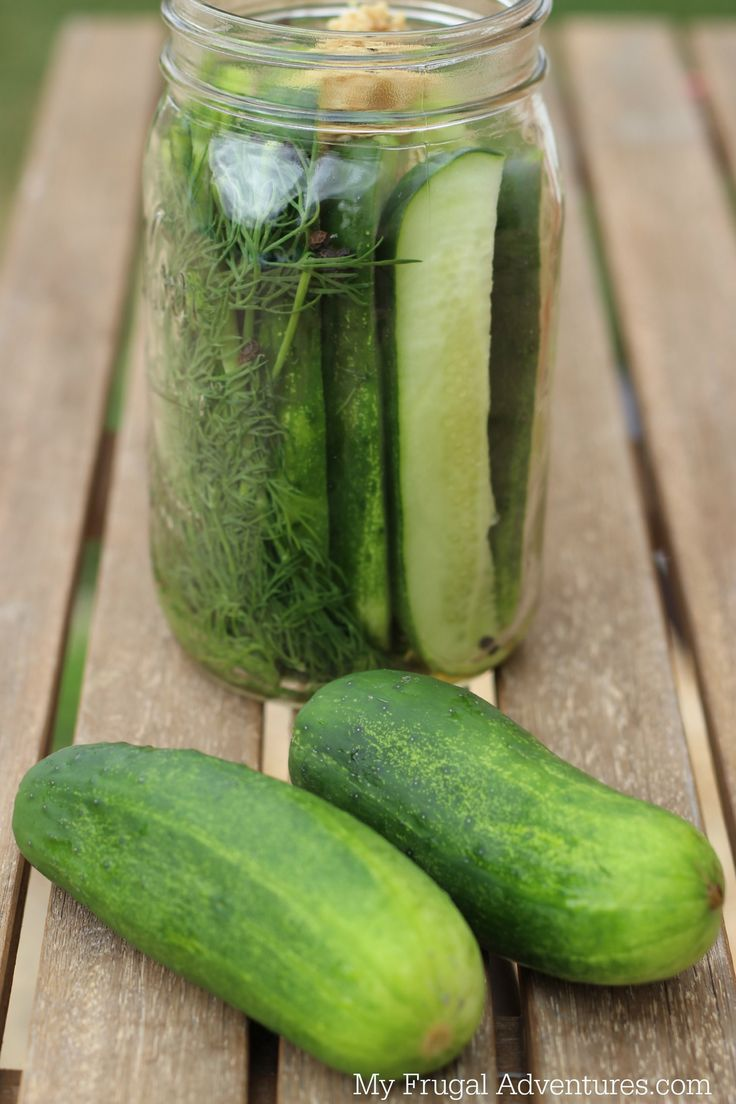 fast easy homemade refrigerator pickles homemade refrigerator pickles ...