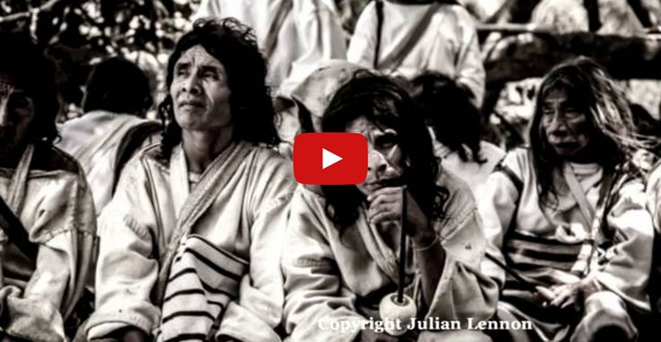 Julian Lennon's ALUNA Support Message - The White Feather Foundation