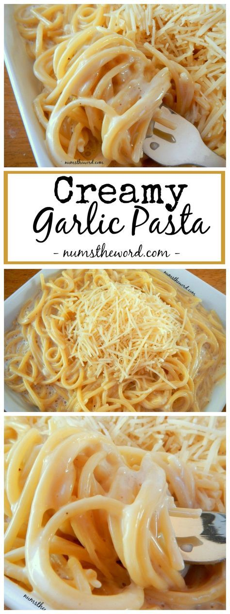 Creamy Garlic Pasta - If you love flavorful one pot meals, you've got to try our family favorite Creamy Garlic Pasta! A one pot meal at it's finest. My kids ask for seconds!