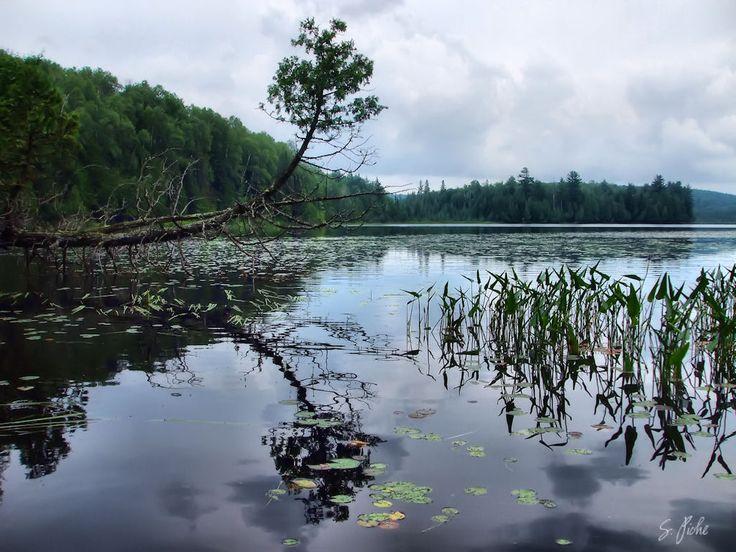 Kelsey Lake