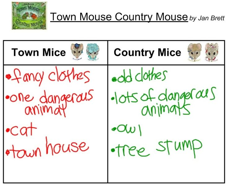 Town Mouse, Country Mouse activity