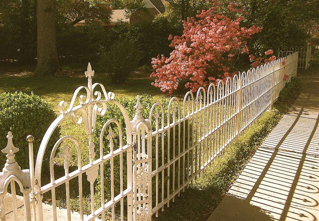 """The Azaleas were bloomin' beautifully  behind the white wrought iron fence  that surrounds a gorgeous old home on  the main street in Raymond!""  ~~~~~~~~~~~~~~~~~~~~~~~~~~~~~~~  ""It's my favorite fence in town and a de-  light to see anytime, but really a http://www.fencecafe.com"