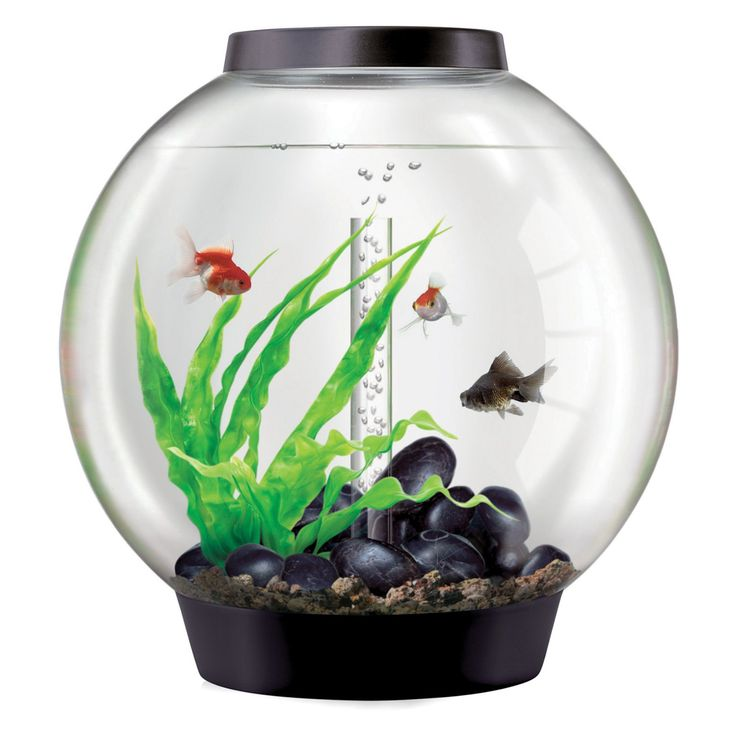 BiOrb by Oase Classic 16 Gallon Aquarium - 45722