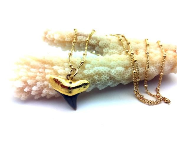 Fossil shark tooth captured in 24K gold and dangles from gold beaded chain. Chain length 18""