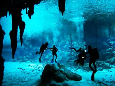 Dos Ojos cenote, Mexico This was truly the coolest thing I have ever seen. Goin' back for sure.