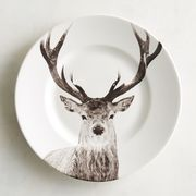 Add some wintery majesty to your table setting with our porcelain salad plate, which boasts a detailed depiction of a stately deer in a timeless sepia color palette.