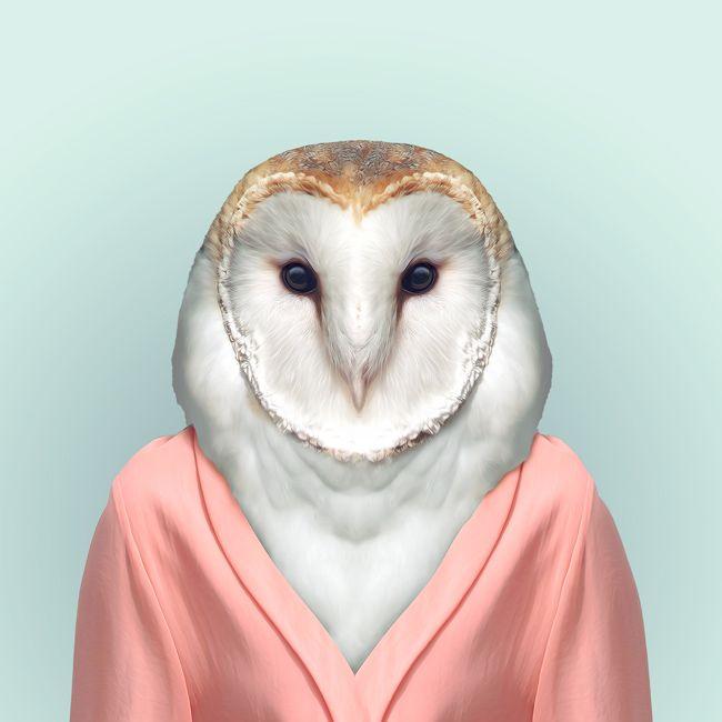 """Será que nossas roupas dizem mais sobre nós do que nós realmente sabemos?   Essa é a idéia por trás """"Zoo Portraits"""" de Yago Partal, uma série de posteres com fotos de animais vestindo como pessoas, que farão você questionar o seu estilo e espírito animal.  Confira: http://www.zooportraits.com/"""