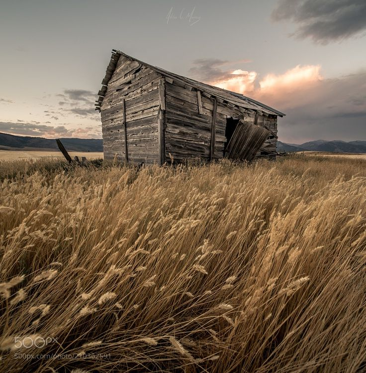 Blowin' in the Wind by AdrianMurray via http://ift.tt/2pHkJxd