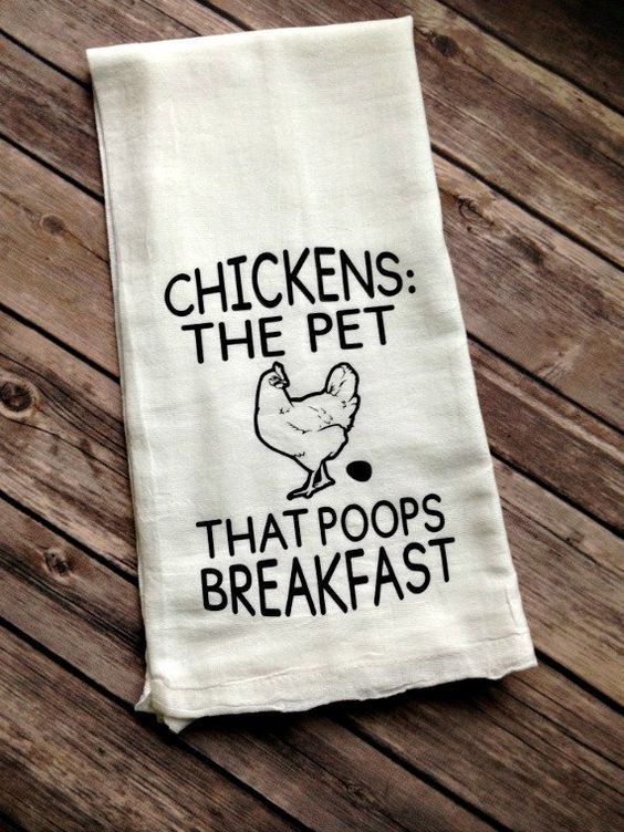 Chickens: The pet that poops breakfast