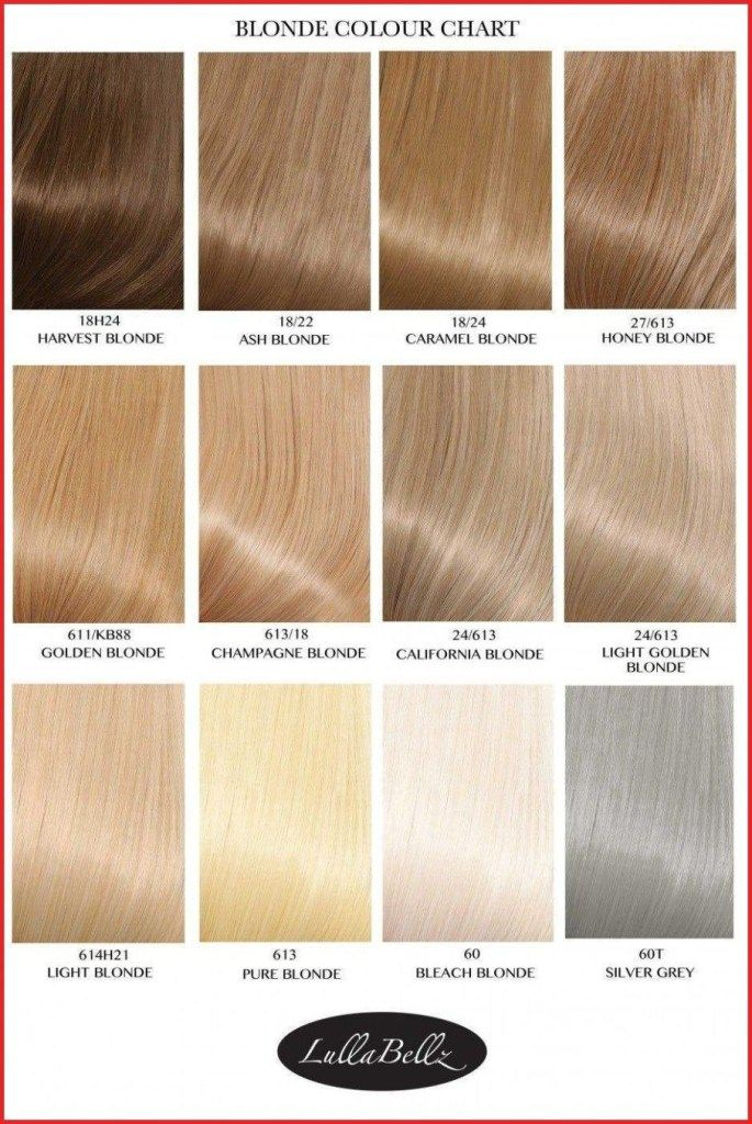 Pin By Mary Maciejewski On A Blond Chart Hair Color Chart
