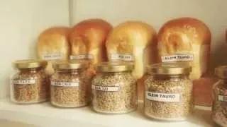 Supersemillas, o sea, semillas OGM en Arg - 2020 - TECtv