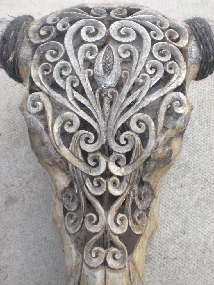Hand Carved Buffalo Skull from Beachcomber.com £400.00