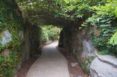 stone brewery escondido - Google Search