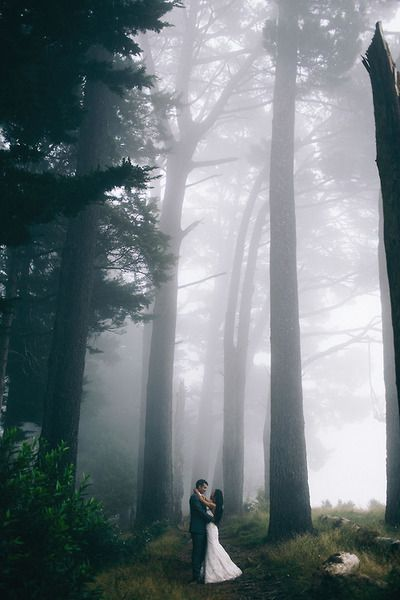 Amazing, magical shot of a bride and groom in a misty forest setting.