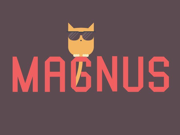 Magnus the cat {gif}