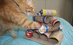 Uma das melhores formas de estimular a inteligência do gato e manter ele entretido é dar-lhe um bom quebra-cabeça com petiscos (leia aqui um pouco mais sobre a importância disso). Essa opção é ridí…