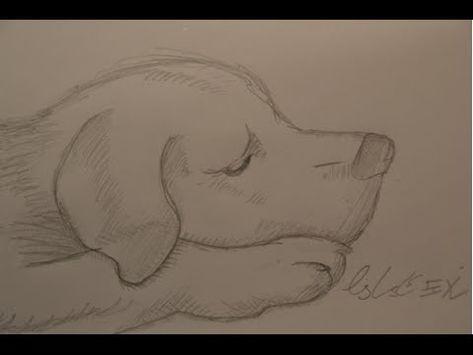 Trauriger Hund [Bleistift-Zeichnung] [HD] – YouTub…