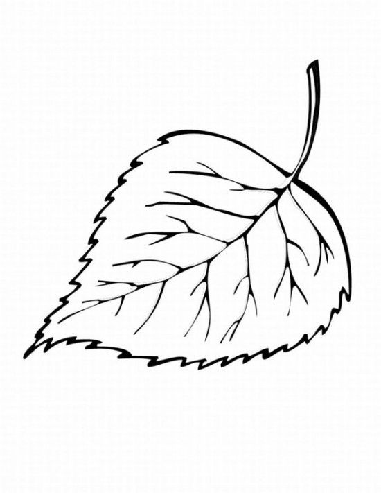 Free Printable Fall Leaves  | Printable Autumn Leaves Coloring Pages Free / All About Free Coloring ...