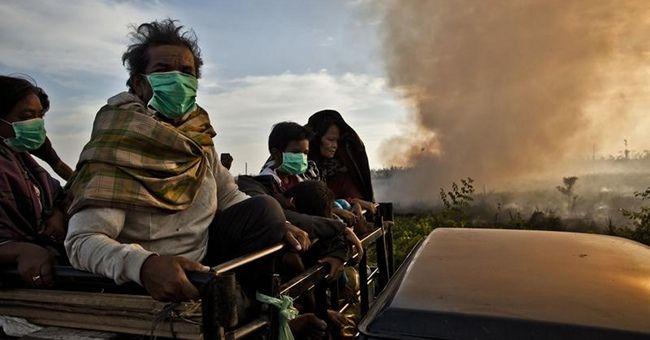 Greenpeace: stop a incendi foreste per l'olio di palma in Indonesia