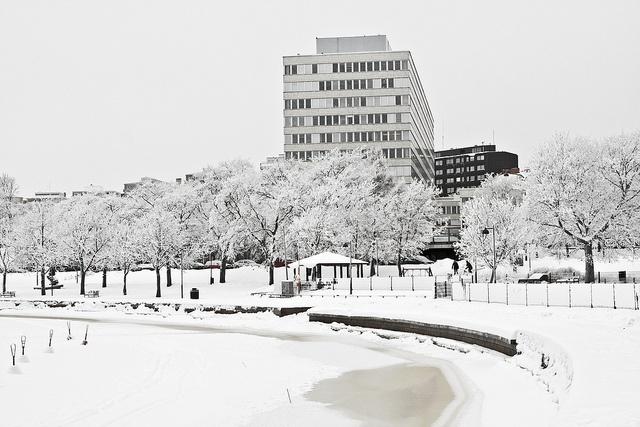 Kallio city office (Helsinki, Finland) building and a Tokoinranta