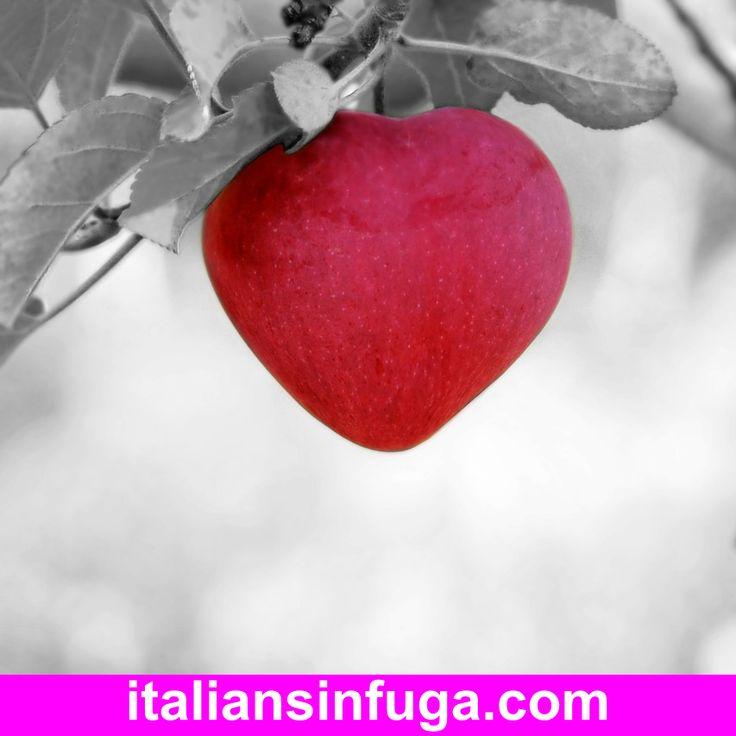 Con l'amore si va lontano. Trasferirsi per amore è uno sentieri più percorsi dagli Italiani e dalle Italiane all'estero.