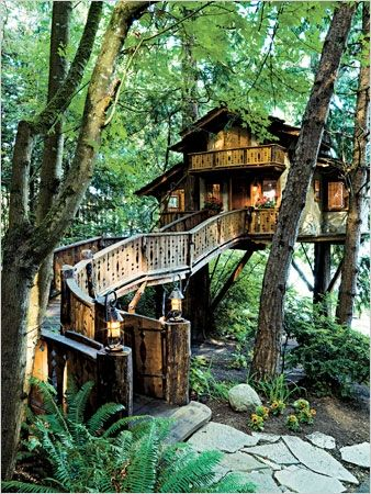 When I was little, I LOVED the Swiss Family Robinson and dreamed of living in their treehouse (minus any bugs that might be there). Okay, I still want to live in that treehouse.....Baumraum Treehouse, Germany