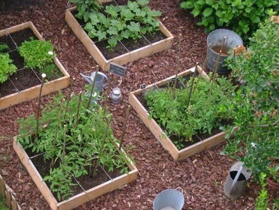 Potager en carr potager et jardin gardening pinterest - Jardin en carre ...