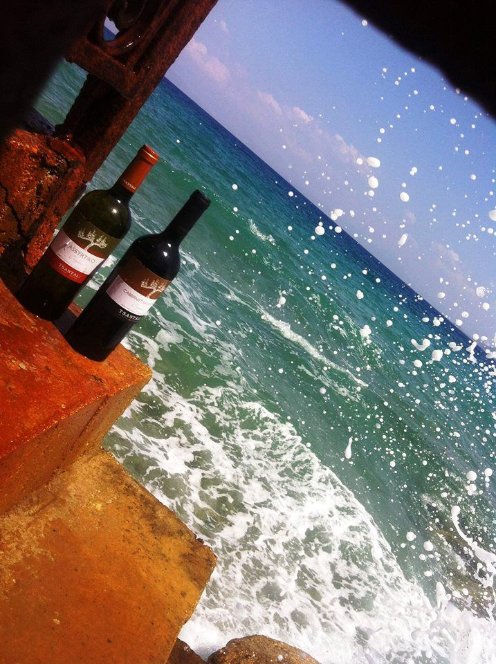 Sunday and letS splash around with our organic wines from Halkidiki. The terroir gives a very distinctive -more fruity and delicate- expression of Assyrtiko and a seductive velvety Cabernet Sauvignon. Grab the glasses please! #Tsantali_world #summer #halkidiki #greece #organic