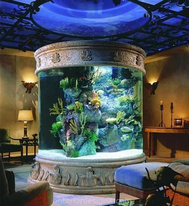 Small Home Design Ideas Com: Aquarium Design For Living Room Daily Interior Design