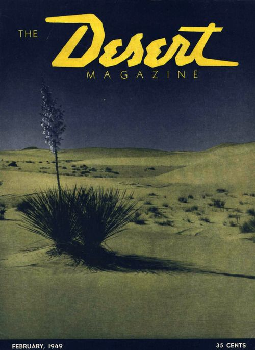 Magazine with interesting logo, I like how three different typefaces are used, but it is not over powering. Desert looks rock and edge like a desert, but it is still in cursive.