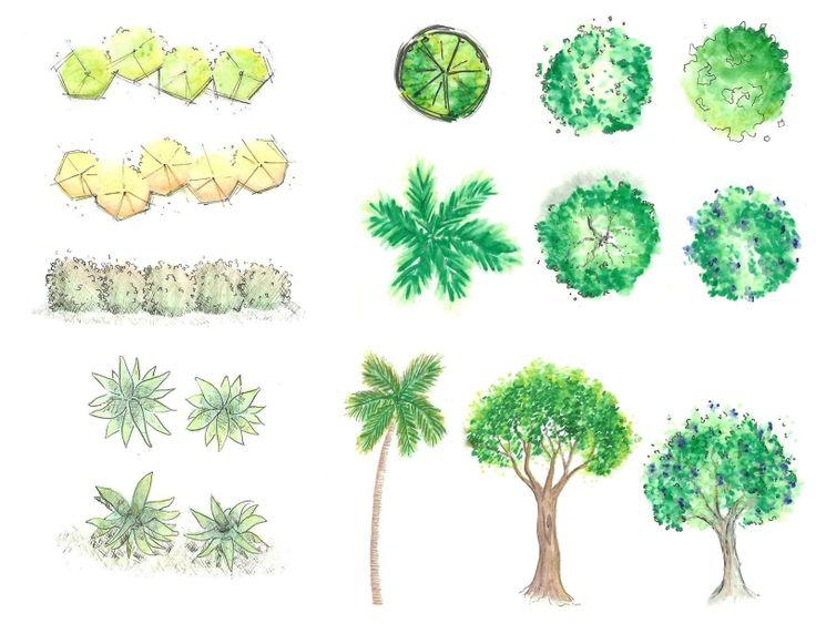 desenhos de arvores paisagismo - Pesquisa Google
